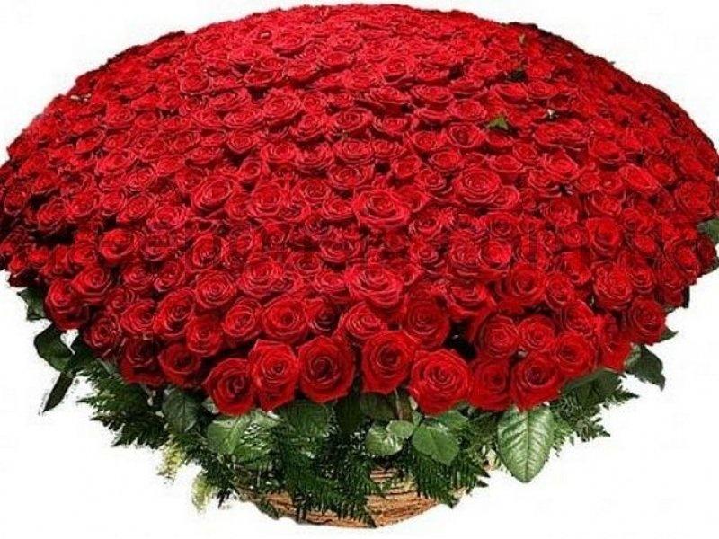 Огромный большой букет цветов в мире, маме цветы