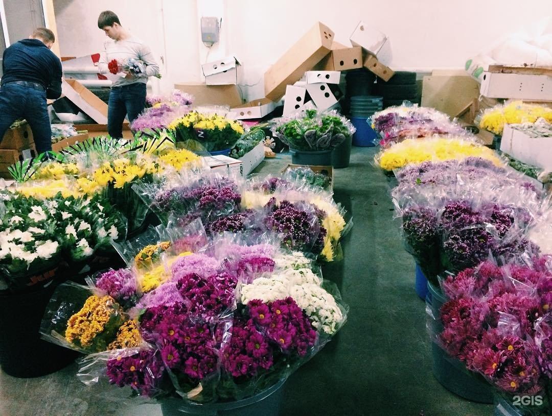 Ищем оптовых поставщиков цветов