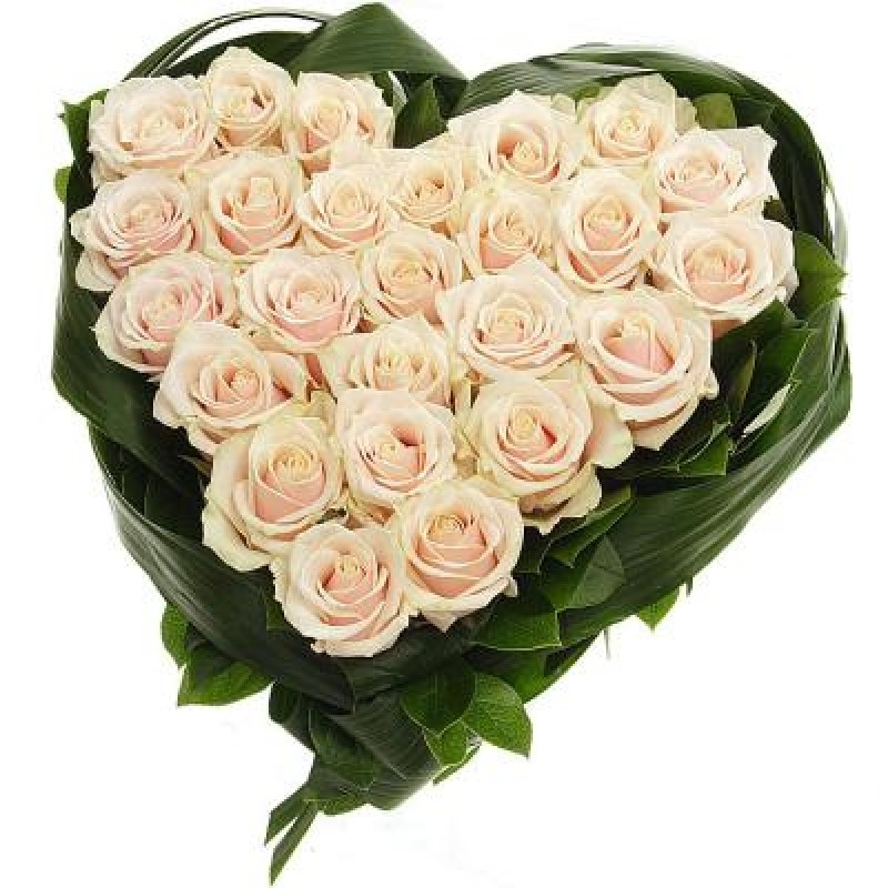 Цветы в виде сердца спб, цветов