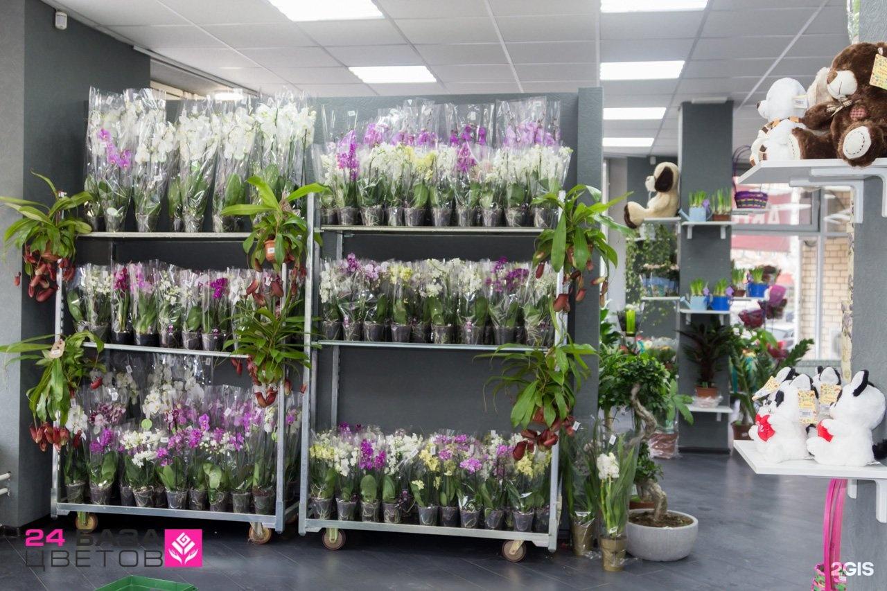 Роз, оптовая цены на цветов нижний новгород