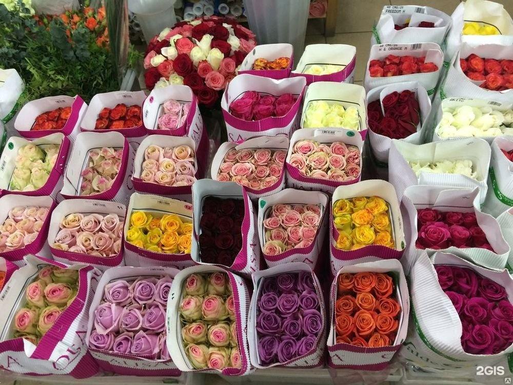 Оптовая база срезанных цветов г. москва