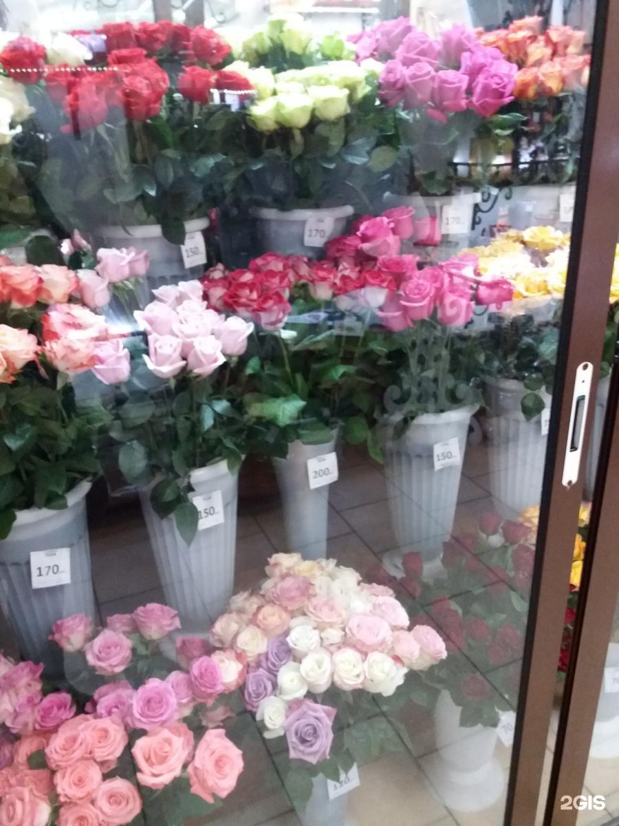 Цветов, цветы в томске с доставкой на дом азалия