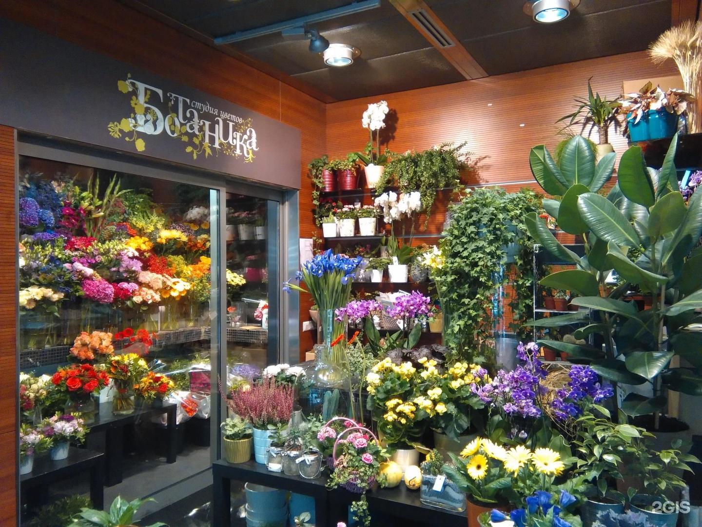 Цветы цветочного магазина названия