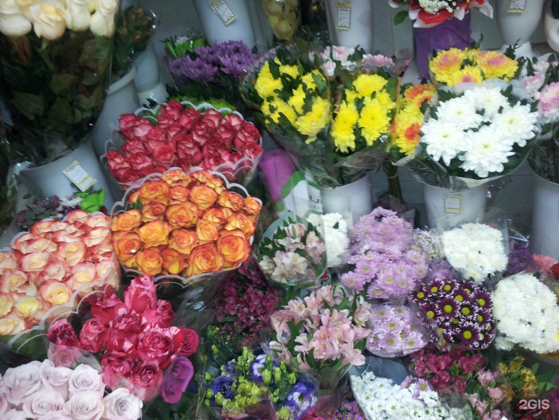 Опт база цветов волгоград, цветов балашиха