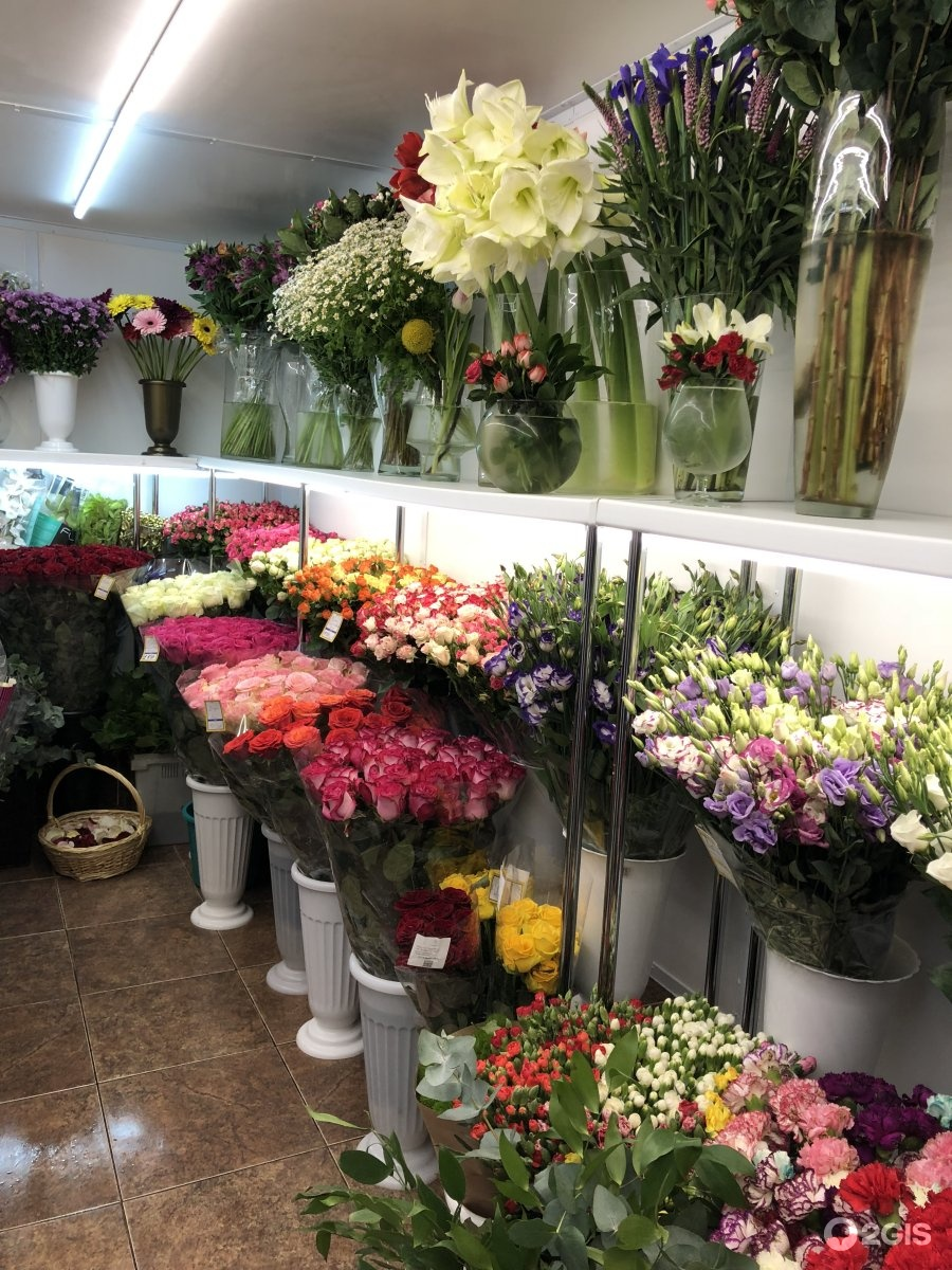Цветочка магазин цветов москва кутузовский проспект, купить