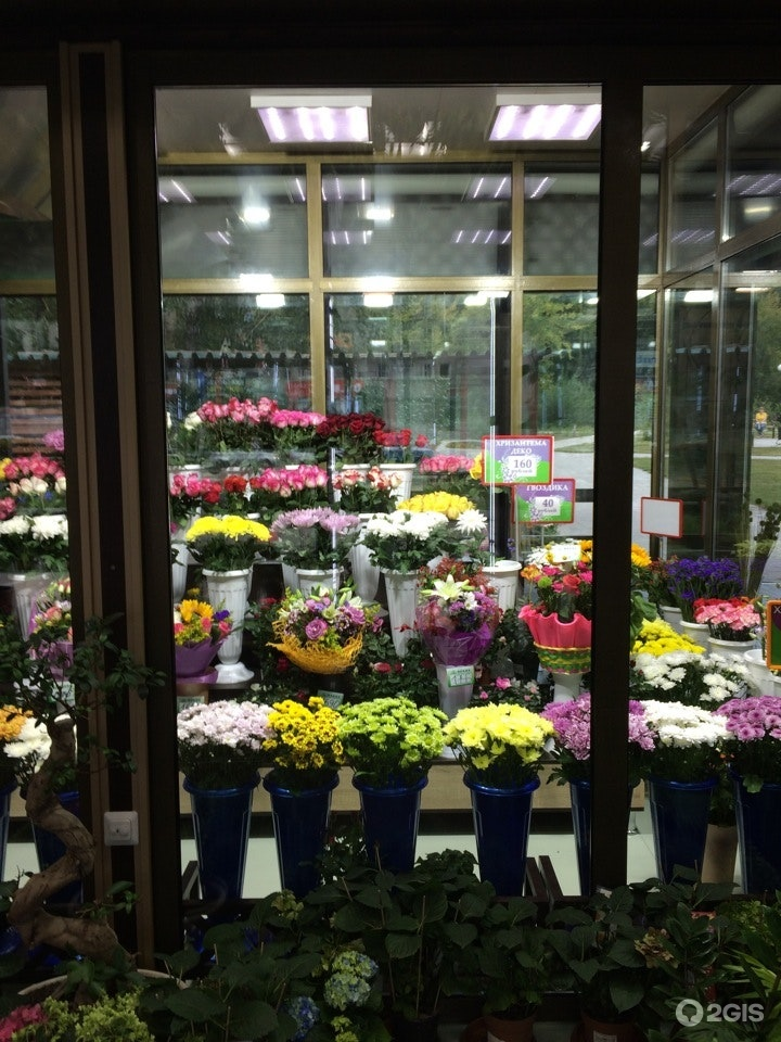 Для, цветы оптом улан-удэ крона
