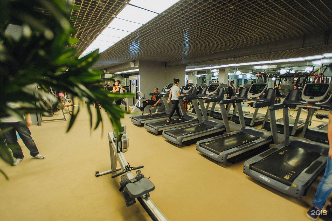 Так же разнообразны и направления тренировок: также представлен большой выбор гантелей и штанг, для любителей свободных весов.