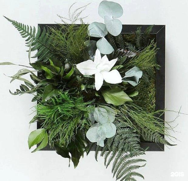 Опт цветов с доставка г рязань черновицкая цветов