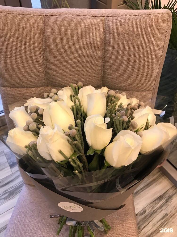 Для элджернона, магазины цветы караганда